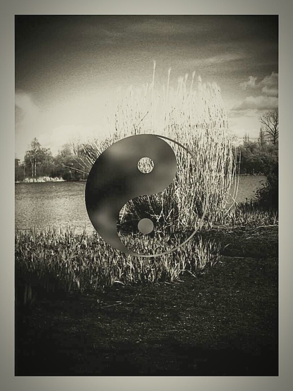 auto post production filter, grass, field, agriculture, nature, outdoors, rural scene, growth, no people, sky, day, landscape, scenics, cereal plant, wheat, beauty in nature
