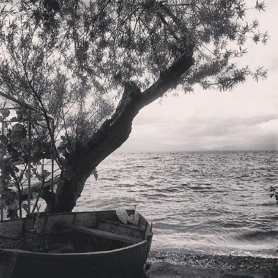 Sivo Landscape Lake Blackandwhite Ohridlake