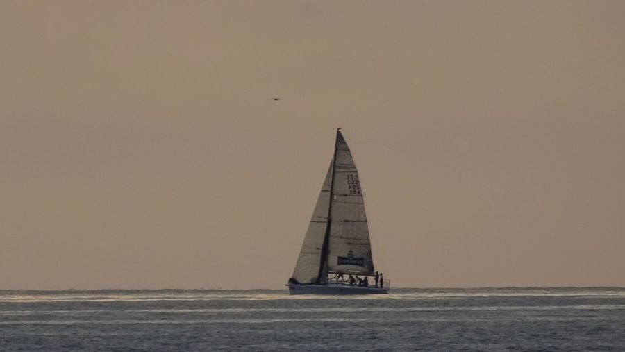 Sailboat sailing on sea against clear sky during sunset