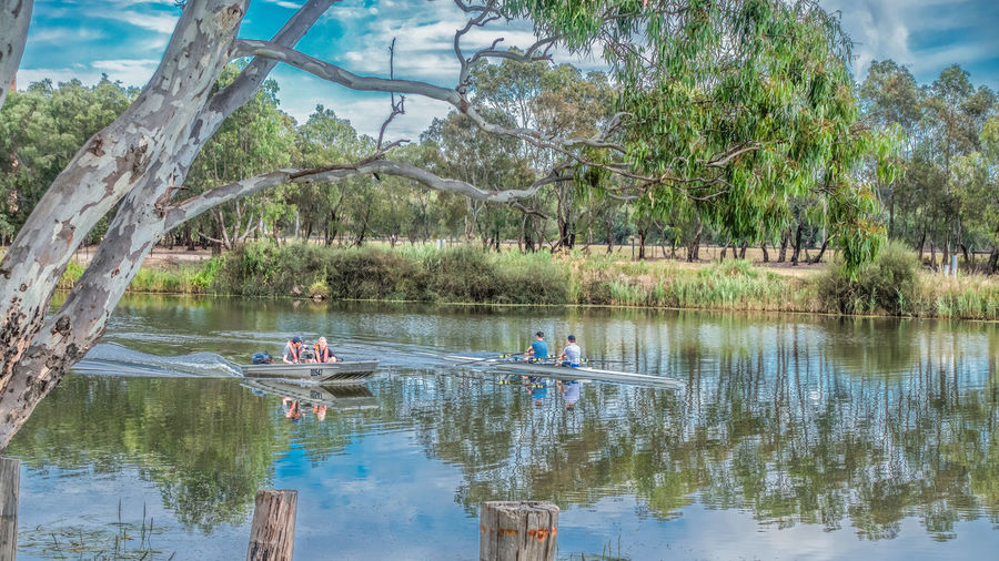Activities at Barwon River Geelong Barwon River Calmness Canoeing Holiday Leasure Time Recreation  River View Summertime Beauty In Nature Countryside Geelong Leasure Activity Nature Outdoors Painting People Plant Recreation Area Reflection River Riverscape Tranquil Scene Tranquility Tree Water Summer Sports