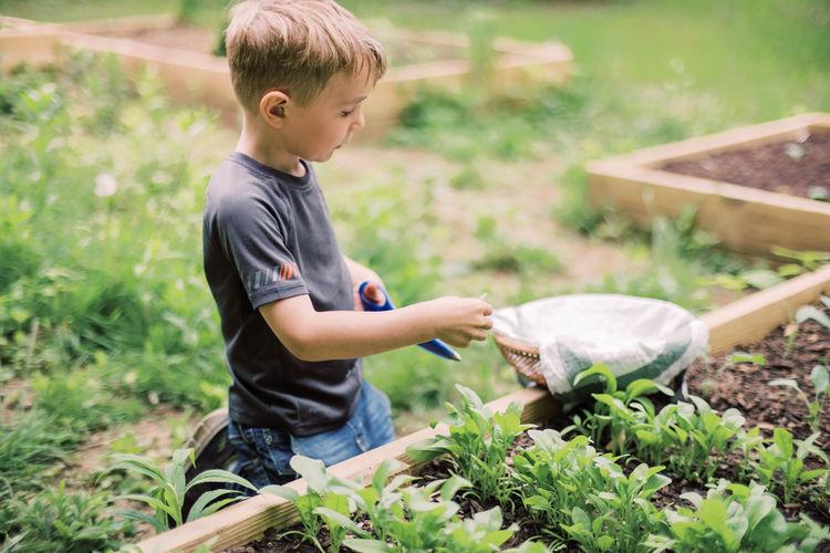 Full length of boy holding plants on field
