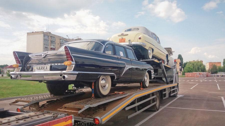 Transportation Sky Day Rarity Cool Gull 60's Vintage Blackandwhite Love Original