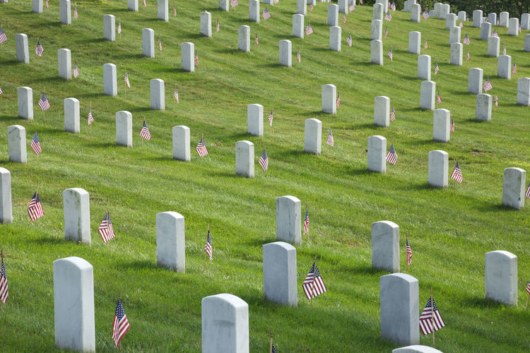 American Flag Arlington National Cemetery Cemetery Color Image Gravestones Memorial Day Military No People Rows Of Things Soldier