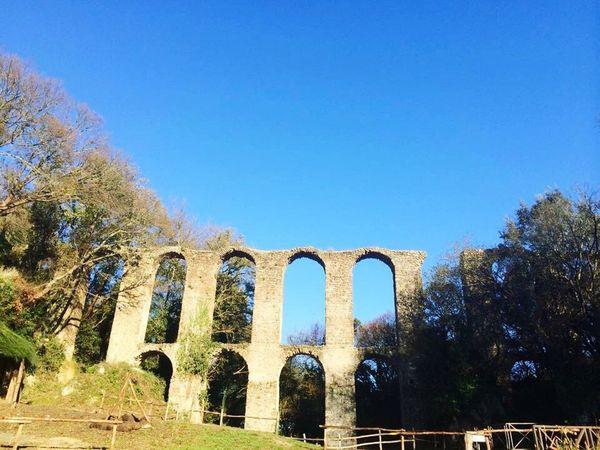 Anticamonterano Ruderi Cittàmorta Monterano Medieval Acquedotto Riservanaturale Nature