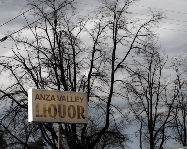 Low angle view of information sign against bare trees during winter