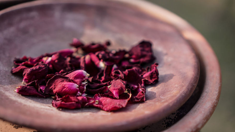 Close-up of dry rose petals on container