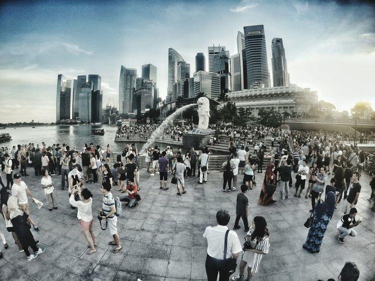 Merlion Singapore City Merlion Park Crowd People Gopro Goprohero4 Tourist