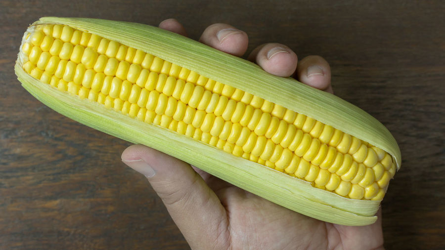 A Fresh corn on Table close up image background. Wood Body Part Close-up Corn Corn On The Cob Finger Food Food And Drink Freshness Hand Healthy Eating High Angle View Holding Human Body Part Human Hand Indoors  One Person Real People Sweetcorn Vegetable Vegetarian Food Wellbeing Yellow