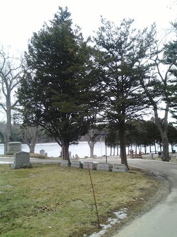 Cemetery Photography Cemetery Cemetary Shots Nature MassachusettsStreetphotography Gardnermaphotographer Amaturephotography Picsforautism