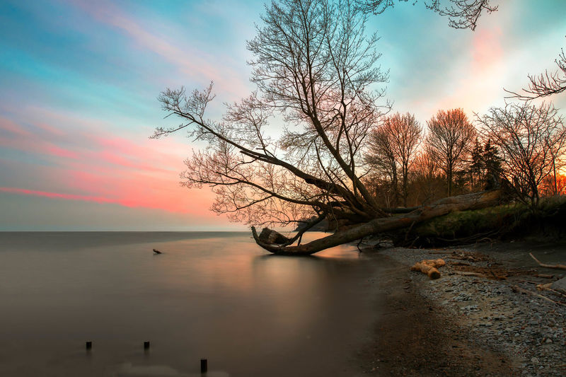 Sky Water Beauty In Nature Tree Scenics - Nature Sunset Tranquil Scene Cloud - Sky Tranquility Nature Bare Tree No People Non-urban Scene Horizon Outdoors Horizon Over Water Landscape Landscape_Collection Long Exposure Slow Shutter Beautiful Nature Silence Of Nature EyeEm Best Shots EyeEm Nature Lover EyeEm Selects EyeEm Gallery Clouds Clouds And Sky Lake Ontario Lake Lake View Lakeshore