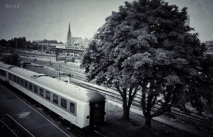 Berlin Blackandwhite Train Urban Landscape