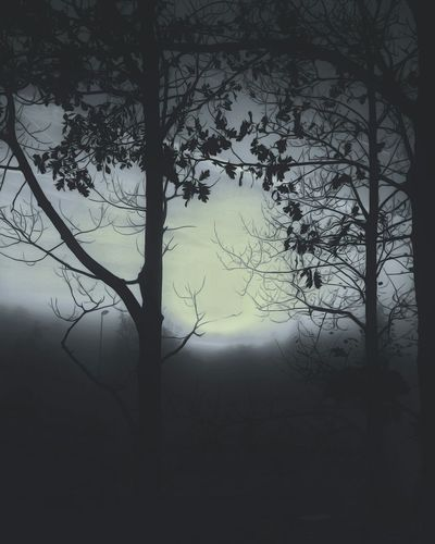 Silhouette bare trees on landscape against sky