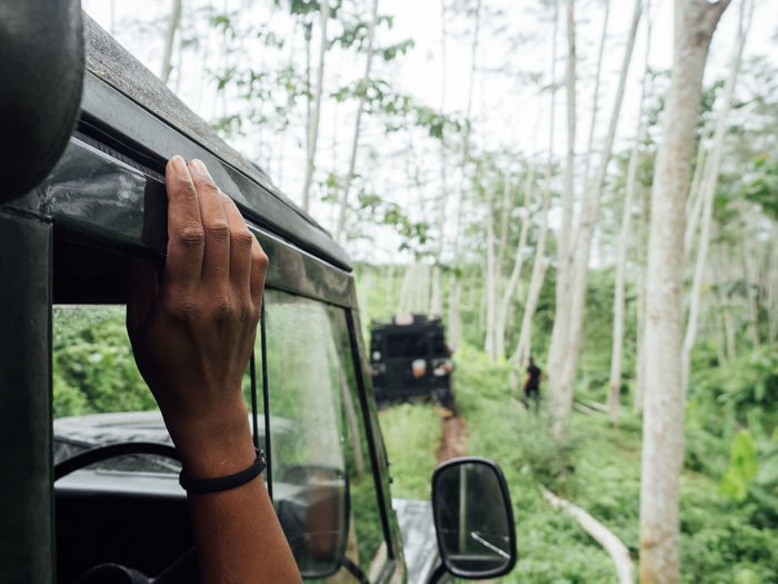 Cropped hand of person sitting in off-road vehicle in forest