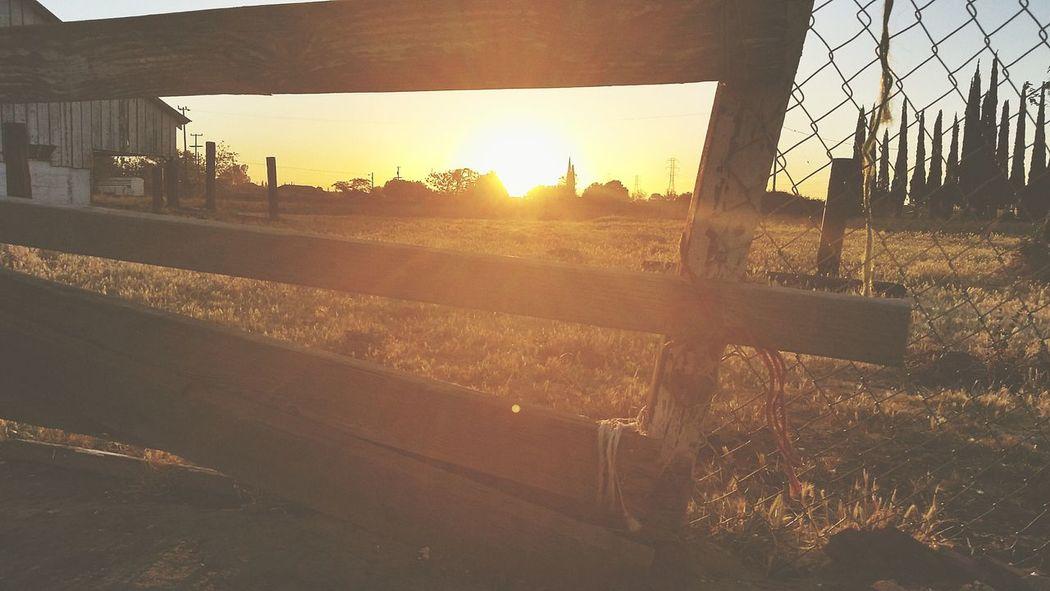 Sunrise Fences Abandoned Barn Pasture