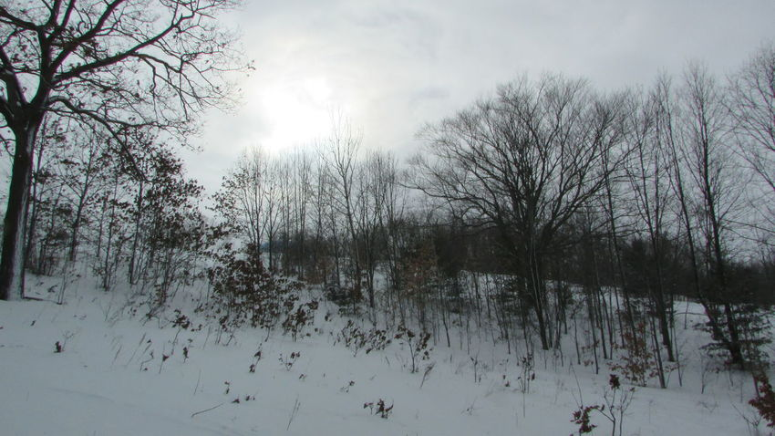 Taking Photos Diggins Hill Sun Trying To Break Through The Clouds My Point Of View No People So Quiet Today Cadillac Michigan