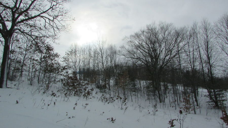 Taking Photos Diggins Hill Winter Wonderland Sun Trying To Peek Through The Clouds Very Cold Morning Cadillac Michigan