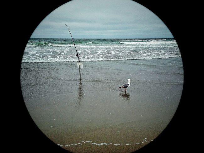 IPhone5 Camerabag2 Circle Frame Fishing