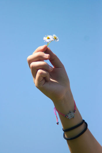 Close-up of woman holding flower against blue sky