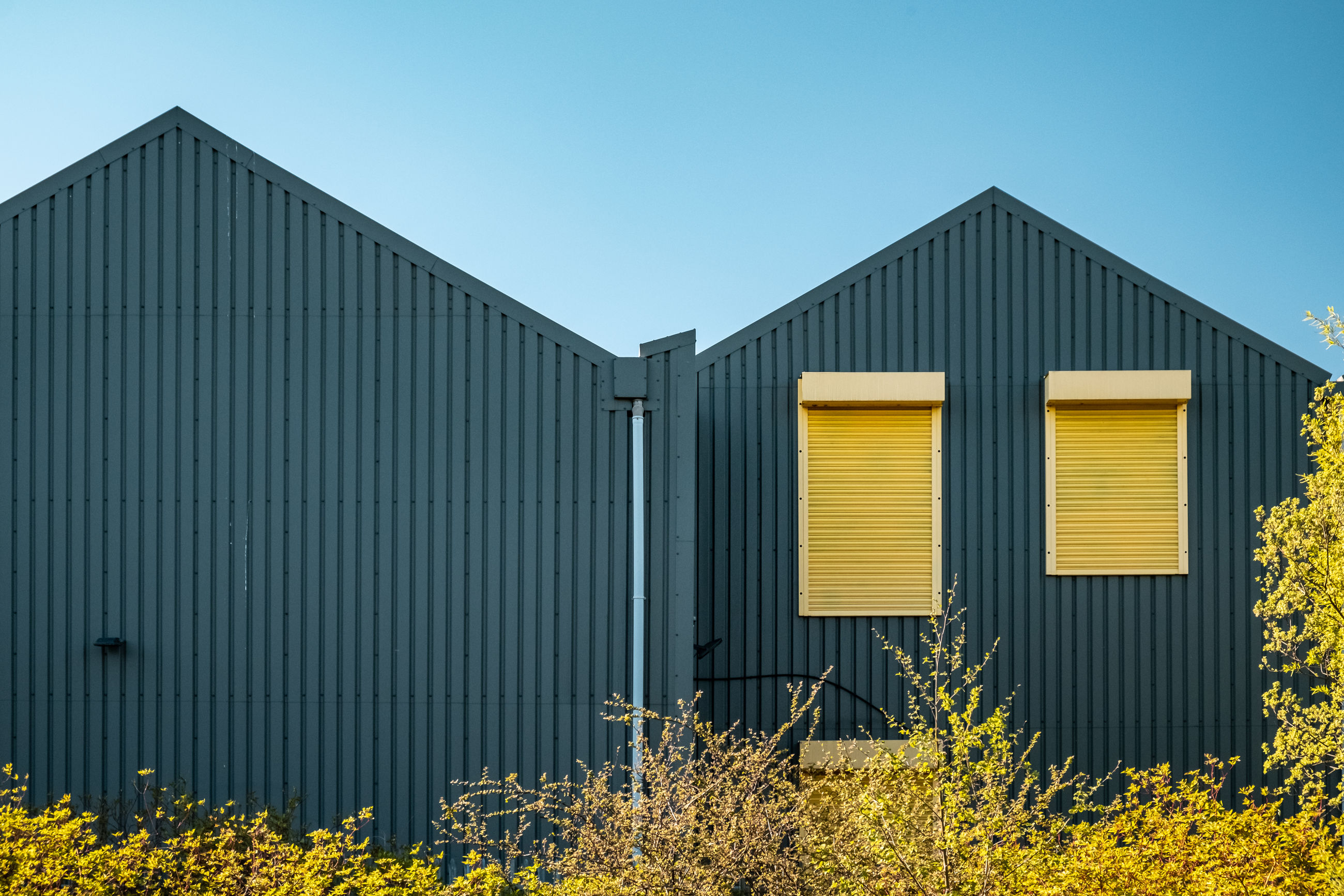 built structure, architecture, building exterior, sky, yellow, clear sky, plant, day, no people, nature, blue, building, outdoors, metal, corrugated iron, land, iron, sunlight, corrugated, hut