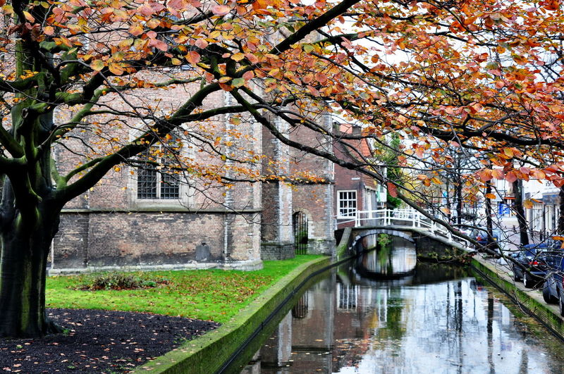 Holanda Netherlands Canals And Waterways Canals Otoño Fall Fall Beauty Fall Colors Autumn Colors Autumn