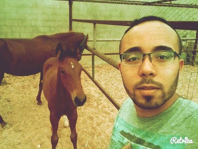 Looking At Camera Libya Tripoli Selfie Goodmorning EyeEm  Italy🇮🇹 Libya Animals Selfie ✌ Horses Horesfarm
