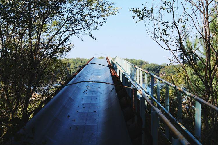 Tree Clear Sky Railing Low Angle View Bridge - Man Made Structure Connection Bridge Day Branch Sky Outdoors Growth Blue No People Railway Bridge Railings Conveyor Belt