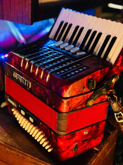 Enjoying live music Cultural Art Acordeón Red Lights Special Place Musical Instrument Close-up Indoors  Musical Equipment No People Arts Culture And Entertainment Music Keyboard Instrument Accordion High Angle View Red