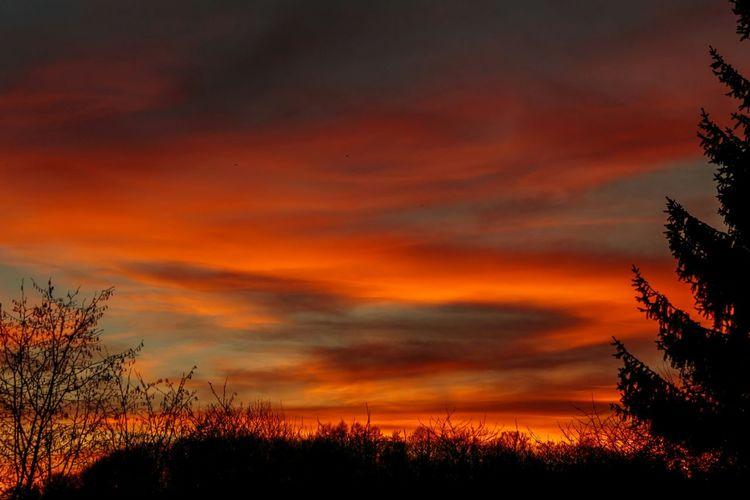 Evening sky. Sweden Skåne Stehag Sunset Sky Clouds