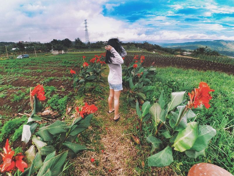 new hope new year 💐💕 EyeEmNewHere Sky Folkindonesia Lifestyles Landscape Beauty In Nature Plant Field Growth Nature Dailyphoto VSCO Vscocam Vscogood Vscogrid Vscophile Vscodaily Snapseed Outdoors EyeEmNewHere