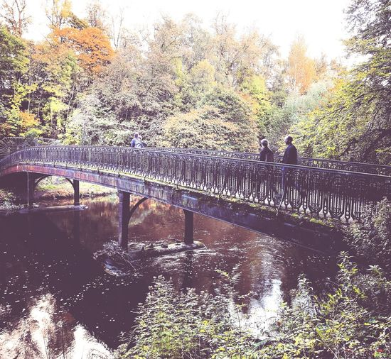 Autumnal wanderings Glasgow  Riverkelvin Botanics Citywalks Autumn Season  Timetogether Outdoors Nature Outdoorphotography Naturelover Riverside Scotland Bridgeoverwater EyeEm Gallery EyeEm Nature Lover