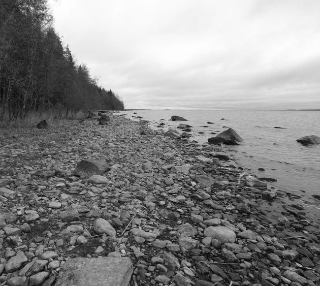 Rocky beach in autumn, and it was cold there today. I photomerged two photos on Adobe Photoshop Elements. Beach Beauty In Nature Black And White Cloud - Sky Coastline Nature No People Non-urban Scene Outdoors Pebble Scenics Shore Sky Stone - Object Tourism Tranquil Scene Tree Water Stony Beach Cloudy Day Ranta Strand Playa