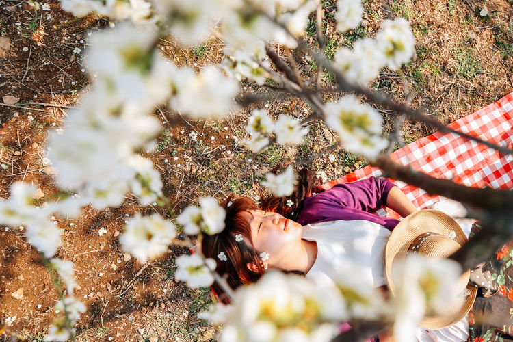 High angle view of woman napping while lying on land seen through blossoms