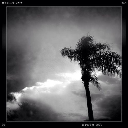 Noir Sunset Silhouettes HipstaEdit Monochromatic