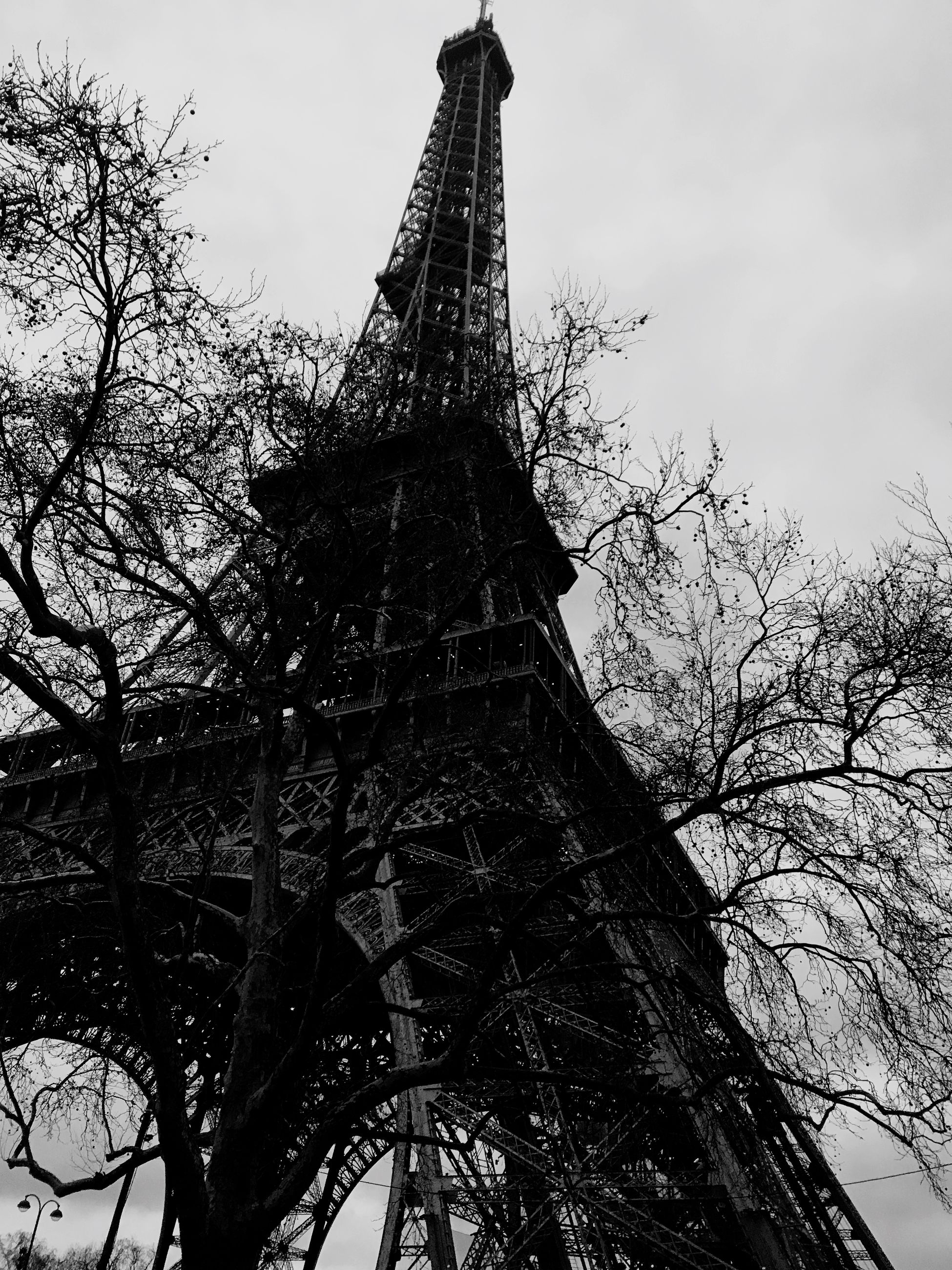 tower, architecture, built structure, low angle view, travel destinations, history, tall - high, tree, tourism, travel, architectural feature, bare tree, monument, outdoors, metal, sky, building exterior, day, tall, branch, no people, ancient civilization, city