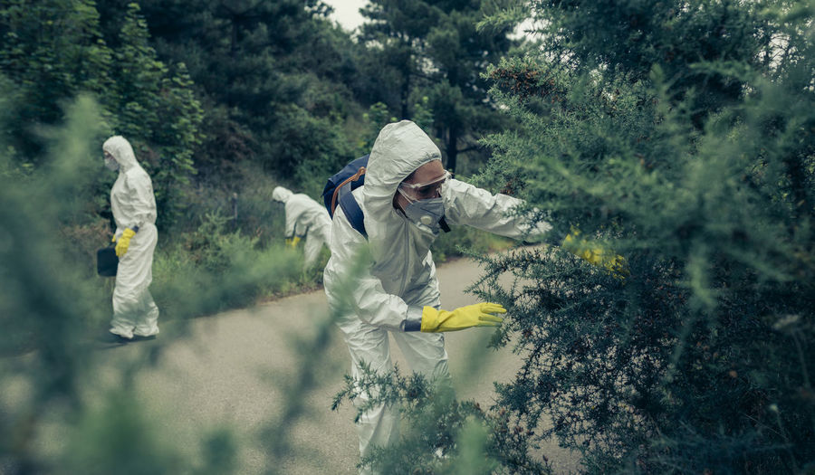 People with protective workwear standing by plants