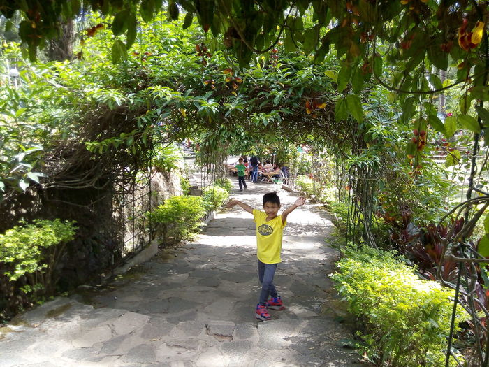 Footpath Green Color Growth Leisure Activity Nature Outdoors Plant Tree