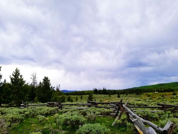 Wyoming Landscape Fence Line Uinta Wilderness Mountains Remote Places EyeEm Selects Tree Rural Scene Sky