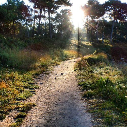 Walk Morning Holidays Santemarine combritbretagnesunrisepathcoolyololikenicepicofthedaysunnycolourful