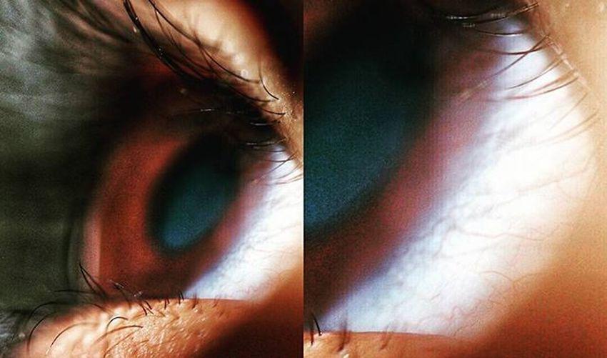 Macros Macrophotography Macroworld Macrophotography Vains Eye Humaneye Instamacro Instasize Canon 100mm @shah_ashutosh