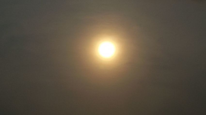 Enjoying Nature 'enjoy The Sun Taking Photos EyeEm Thailand .