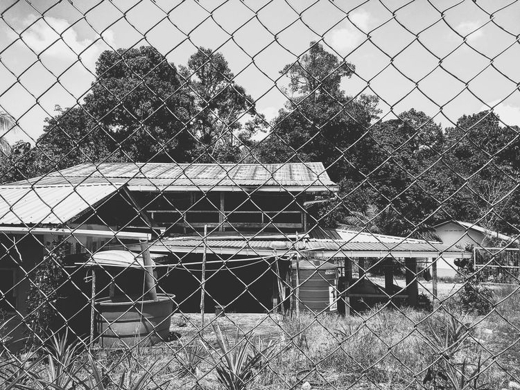 what the best caption for this? Blackandwhite Blackandwhite Random Shots Tree Houseinthewoods Houseintheforest Peaceful Peace And Quiet Peace Chainlink Fence Security Protection Day Outdoors No People Sky