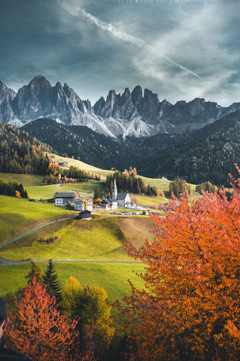 Beautiful autumn colors at the foot of the odle mountains in the backdrop of the seceda mountains