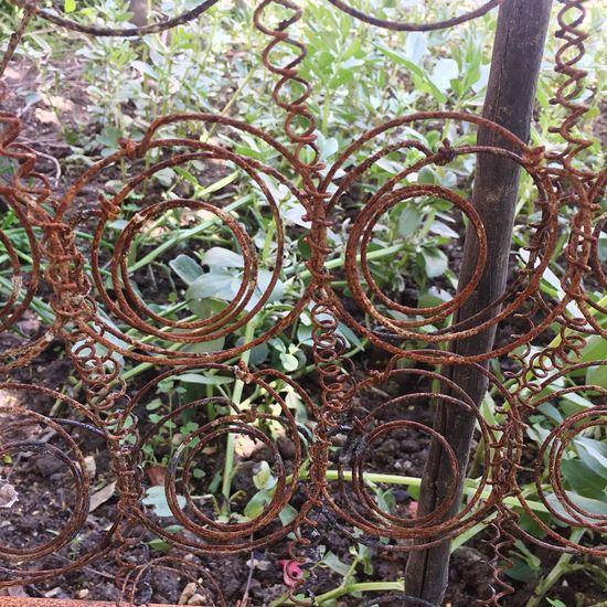 EyeEmNewHere Hidden Beauty Beautiful Nature Steel Structure  Sculpture Steel Sculpture Green