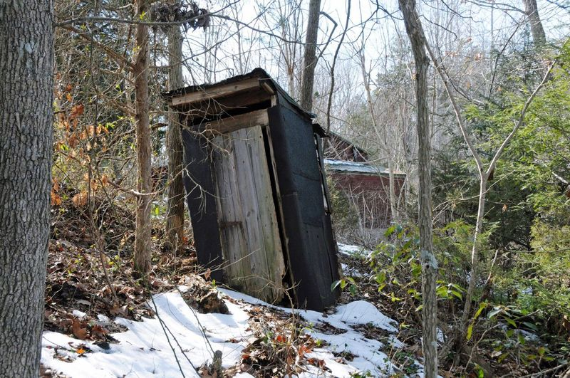 Outhouse Woods