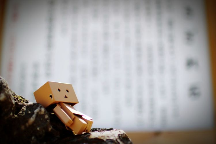 ……zzz. Danbo Check This Out Cheese! Enjoying Life Depth Of Field Shrine Signboard Stone