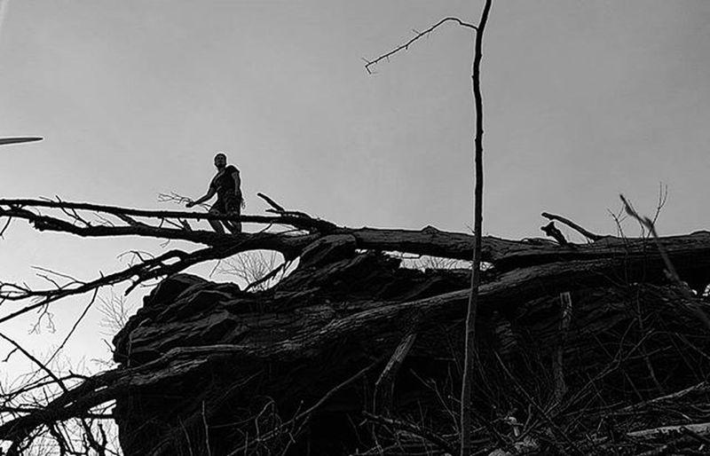 You know I'm up there. Photo Credits: @carl_smith33 . . . . . Adventure Nature Onatree Hill Tree GetOutThere Explore Centralpascenery Naturalpa Naturalpennsylvania Scenicpa