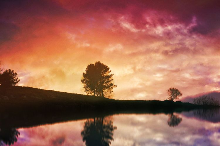 Sunset Sky Nature Tree Silhouette Beauty In Nature Reflection Cloud - Sky Scenics Tranquility Idyllic No People Outdoors Water Tranquil Scene Day Nature Landscape Traveling Travel Colorful Reflection Trees Clouds And Sky Winter