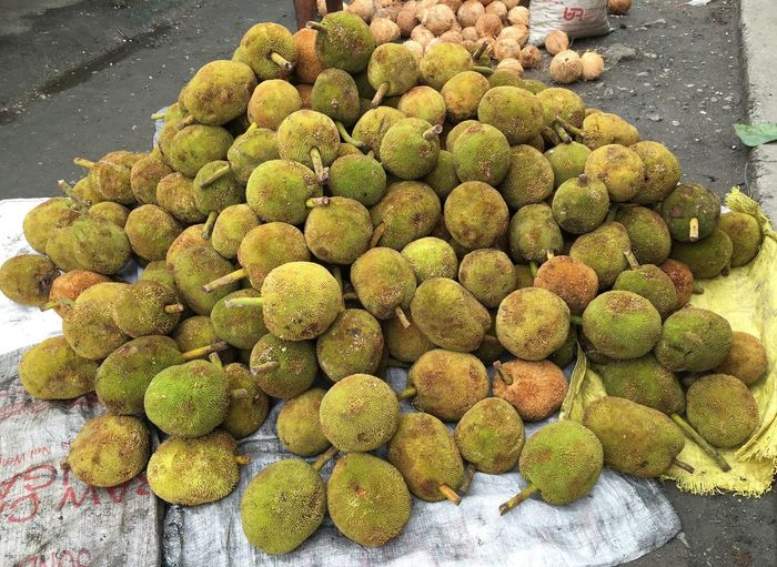 Marang fruit or Artocarpus odoratissimus for sale in Zamboanga City, Philippines. Zamboanga Philippines Marang Fruit Artocarpus Odoratissimus