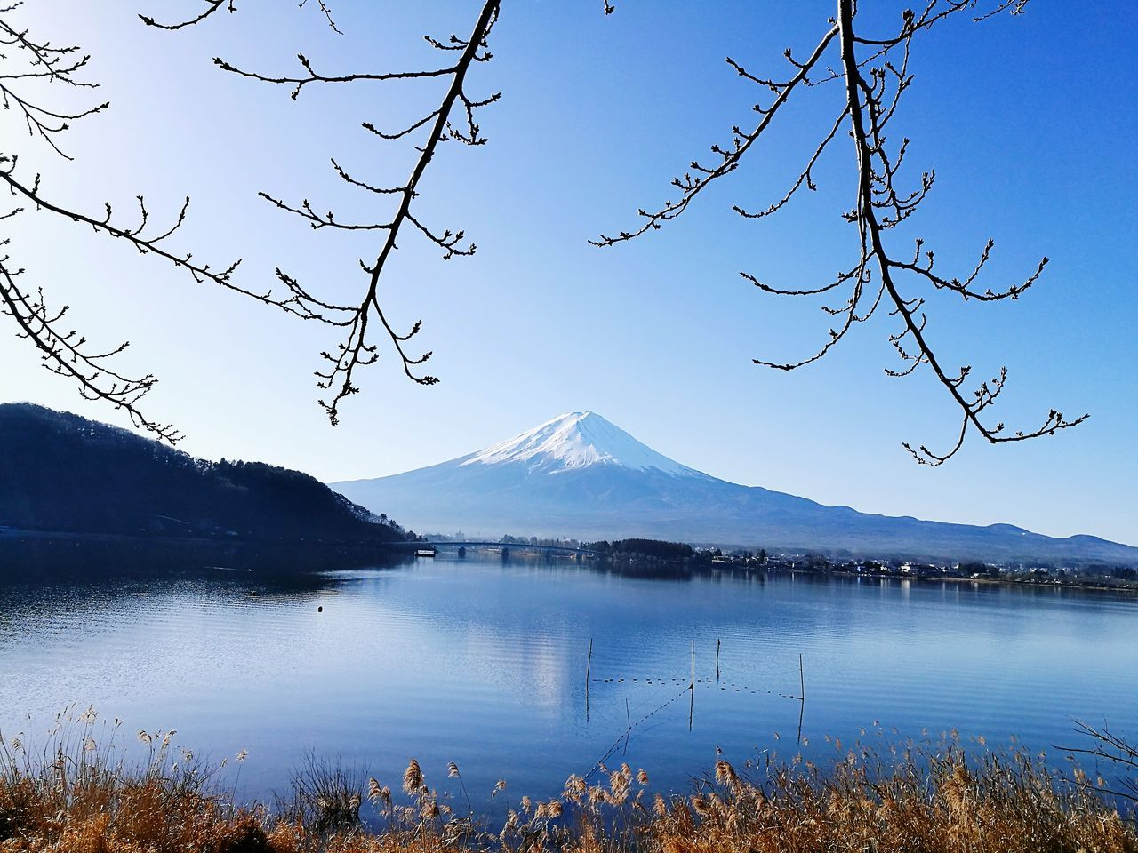 mountain, nature, beauty in nature, scenics, lake, blue, tranquility, no people, tranquil scene, tree, water, mountain range, outdoors, clear sky, sky, snow, snowcapped mountain, day, landscape, branch, peak