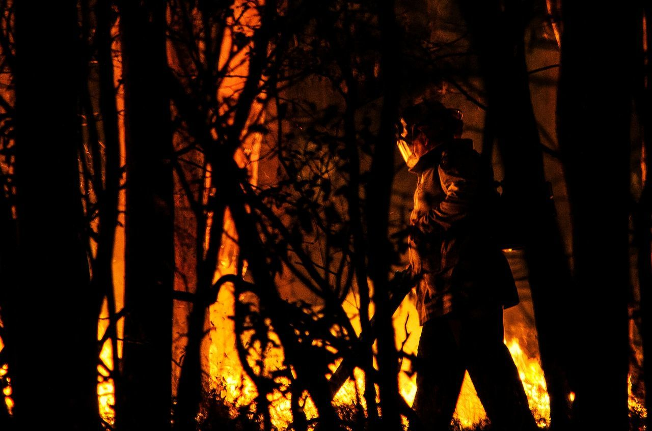 Firefighter Walking By Silhouette Trees Against Fire